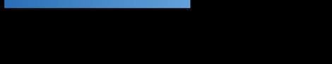 WP-Burmeister - Wirtschaftsprüfung